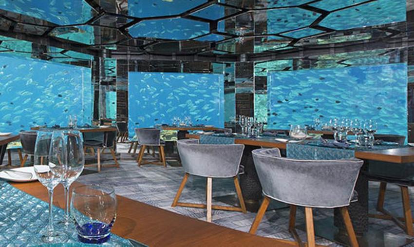 马尔代夫海底餐厅介绍大全