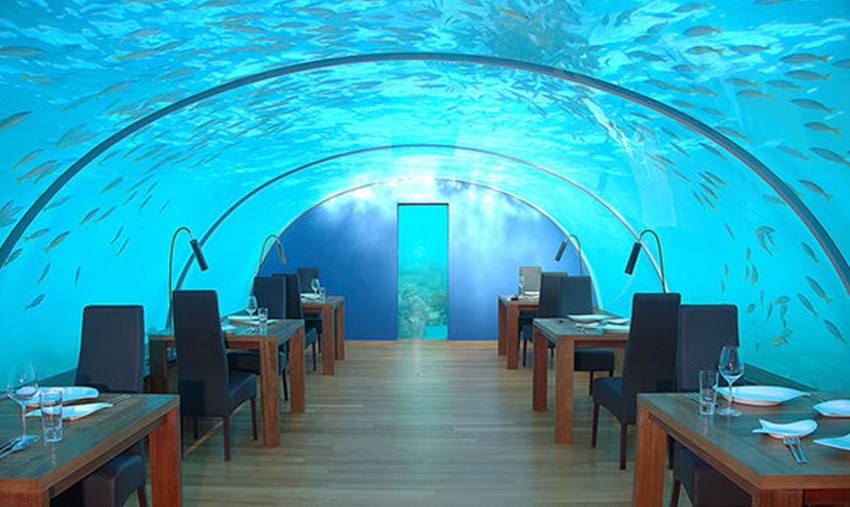 马尔代夫海底餐厅介绍