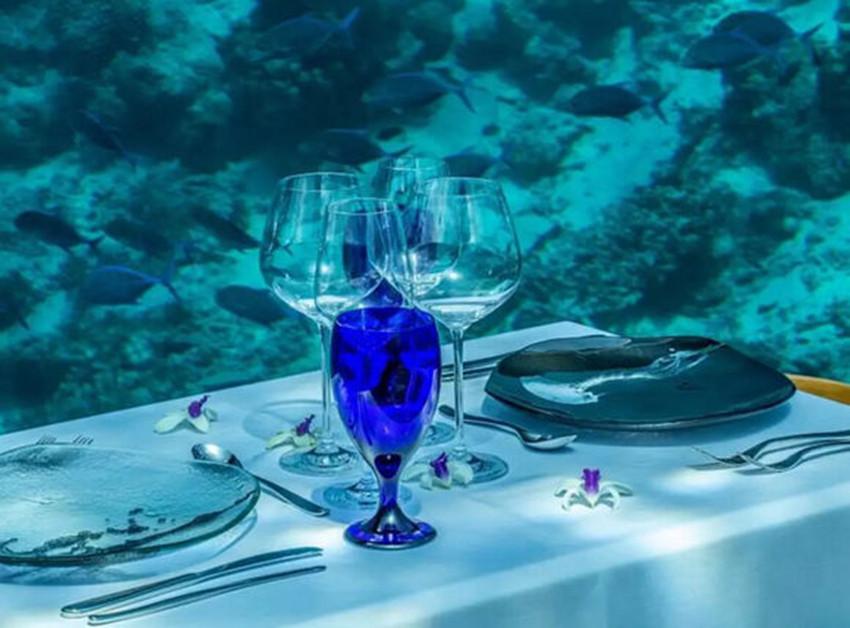 马尔代夫海底餐厅攻略